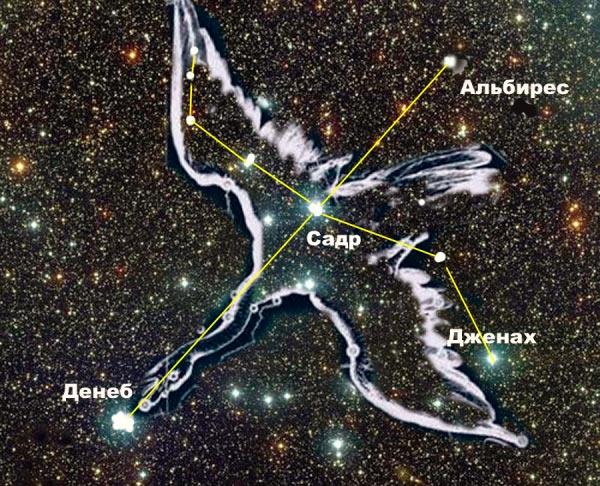 Как уже понятно - абсолютная и относительная заездная величина, вещи совершенно не сопоставимые. Для относительного наблюдателя с нашей планеты, Денеб в созвездии Лебедя выглядит примерно так.