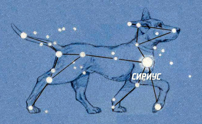 Большой Пёс - верный спутник охотника Ориона. На небе эти созвездия стоят рядом.