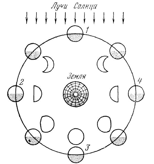 Положения и фазы Луны (1 - новолуние, 2 - первая четверть, 3 - полнолуние, 4 - последняя четверть)