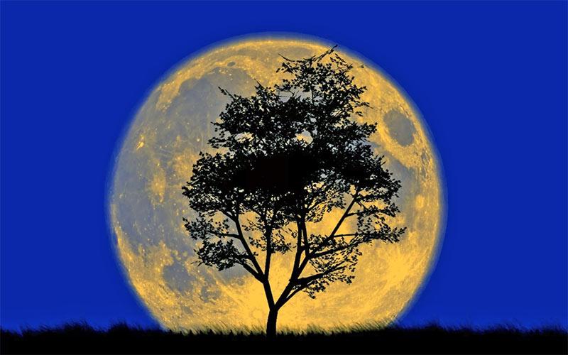 большая луна на фото