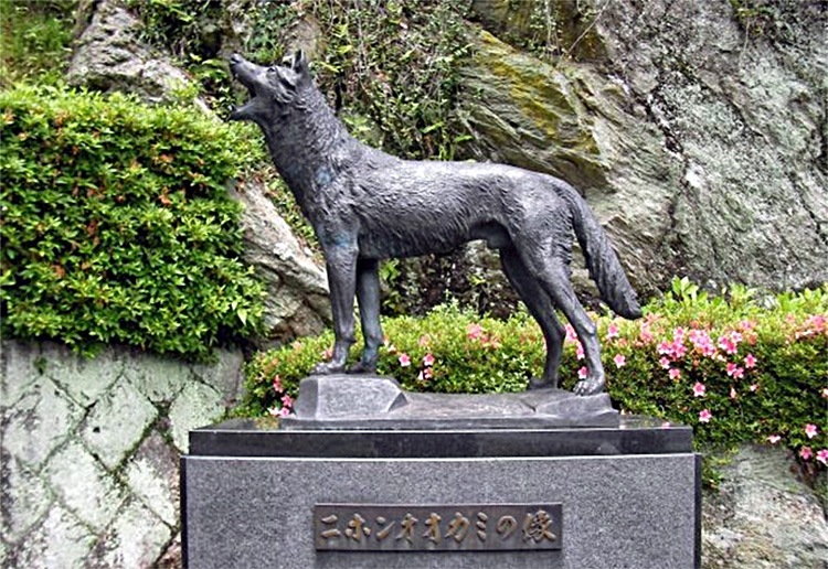 Памятник последнему волку Хонсю