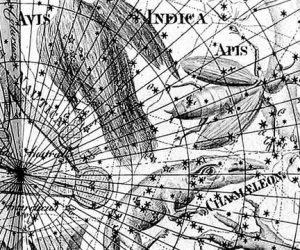 Как найти Созвездие Муха (Musca)