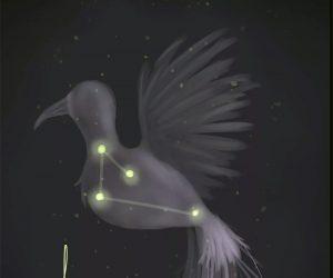 как найти Созвездие Райская Птица (Apus)
