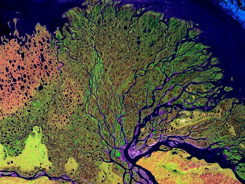 Дельта реки Лена со спутника. Космическая география помогает нам картографировать нашу планету