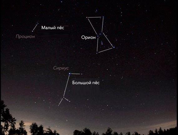 Как найти созвездие малый пёс (Canis Minor) на небосклоне
