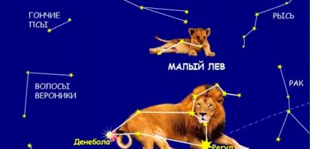 Созвездие Малый Лев (Leo Minor)