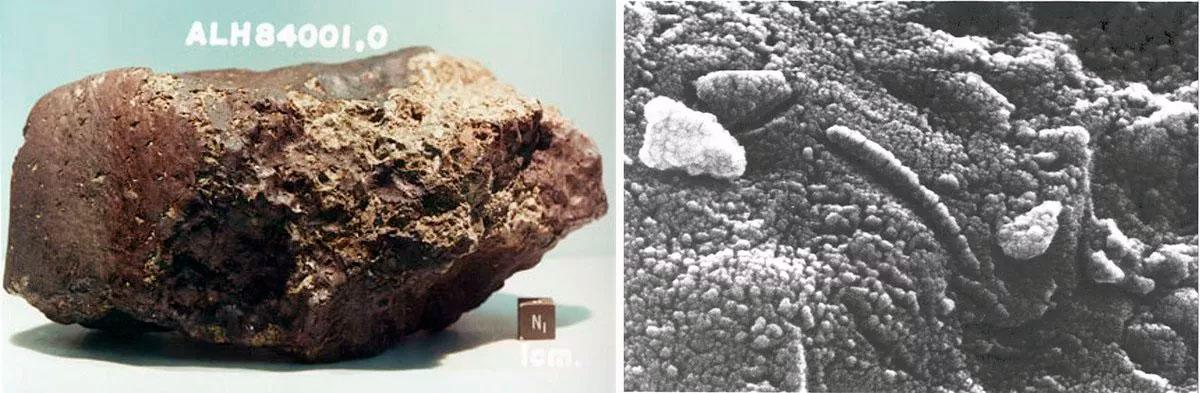 На снимке слева - марсианский метеорит Alh84001, а на снимке справа его внутренности в окуляре микроскопа.