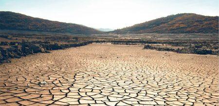 Какими будут последние обитатели нашей планеты?