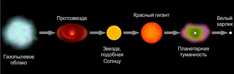Схема того, как появляется звезда белый-карлик.