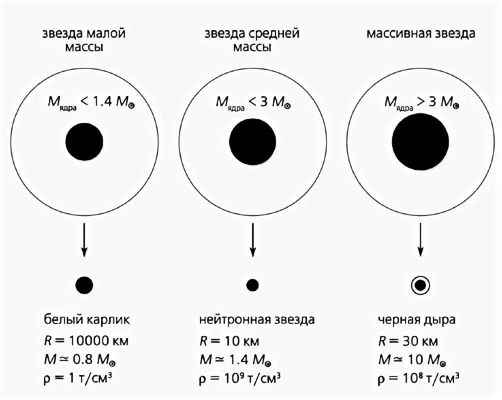 Далеко не все звезды после «смерти» превращаются в белые карлики, более массивные звезды могут образовать нейтронную звезду или даже черную дыру.