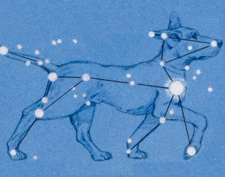Сириус - белая яркая звезда, которую в прошлом считали красной